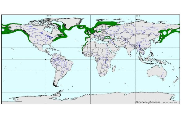 distributionmap of Phocoena phocoena